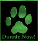 Donate to In-Sync Exotics